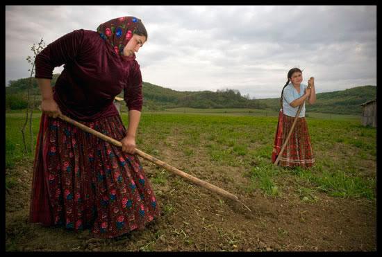 travaux des champs, Bratei