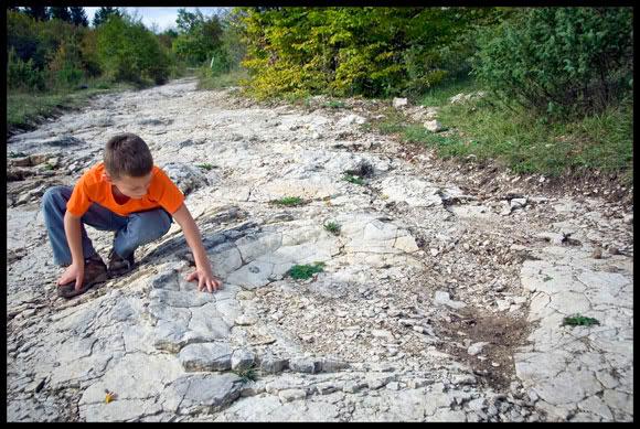 traces de dinosaures à la Plagne dans l'Ain
